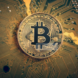 Bitcoin co the som but pha theo Chi bao hoat dong dia chi